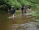 Tìm được con dao hung thủ dùng sát hại 4 người trong rừng rậm