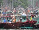 """Hàng trăm du khách """"kẹt"""" ở Quan Lạn, đảo Cô Tô do bão số 1"""