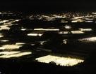 """Choáng ngợp với """"kinh đô ánh sáng"""" ở ngoại thành Đà Lạt"""