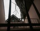 Lâm Đồng thiệt hại nhiều tỷ đồng sau mưa đá kèm lốc xoáy