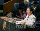 Việt Nam cam kết thúc đẩy khu vực phi vũ khí hạt nhân