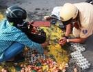 Hình ảnh đẹp của ba chiến sĩ CSGT Quận 10 trên đường phố