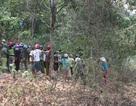 Phát hiện thi thể người đàn ông đang phân hủy trong rừng