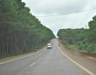 Đường Hồ Chí Minh đoạn qua Tây Nguyên chính thức được thông xe