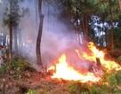 Toàn tỉnh Tây Ninh có nguy cơ cháy rừng cấp cực kỳ nguy hiểm