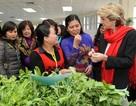 Úc hỗ trợ gần 80 tỷ đồng thúc đẩy quyền cho phụ nữ Việt Nam