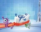 Những nơi vi khuẩn trú ngụ nhiều nhất và cách loại bỏ chúng hiệu quả