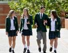 Du học từ bậc phổ thông tại Úc: Cơ hội thành công cao hơn trong sự nghiệp