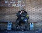 """""""Hơn 100 người Đức đứng trong hàng ngũ phe ly khai Ukraine"""""""