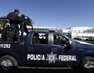 Mexico: Băng đảng mai phục cảnh sát, 10 người chết