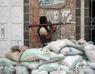 Yemen: Hơn 1.200 tù nhân nguy hiểm vượt ngục