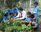 Cải thiện dinh dưỡng - Thay đổi cuộc sống trẻ em cơ nhỡ