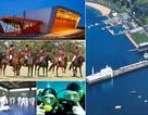 Kardinia International College, Úc – Chương trình phổ thông, IB và cơ hội học bổng