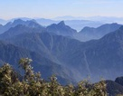 Rừng Cảnh tiên trên đỉnh Fansipan