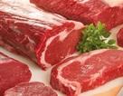 Thịt là động lực của quá trình tiến hóa