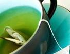 Vì sao trà xanh ngăn được bệnh ung thư vú?