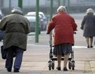 Tìm ra công thức trì hoãn quá trình lão hóa