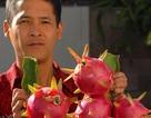 Người Việt trồng hoa, quả bán Tết ở Hoa Kỳ
