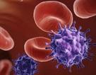 Thêm vắc-xin mới thử nghiệm khả năng phòng HIV