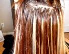 Sự thật động trời về tin giòi ăn não người từ tóc nối