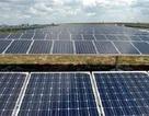 Dự báo tuổi thọ của tấm pin mặt trời