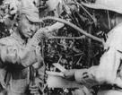 Câu chuyện lạ thường về người lính Nhật tử thủ trong rừng suốt 29 năm