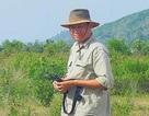 Sếu đầu đỏ cũng bỏ Việt Nam sang Campuchia