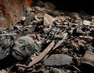 Bất ngờ tìm thấy 50 xác ướp của các thành viên hoàng gia Ai Cập