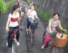 Lao động Việt mưu sinh ở xứ Đài