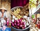 Hình ảnh một Việt Nam muôn màu trên trang BBC
