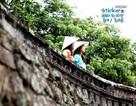 Clip về vẻ đẹp Đà Nẵng của Hàn Quốc gây sốt