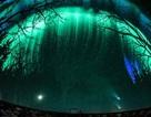 Ngắm bầu trời sao huyền bí tại trung tâm thiên văn Canada