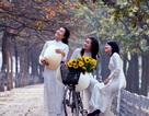 Nghe đàn ông thế giới hát về vẻ đẹp của thiếu nữ Hà Nội