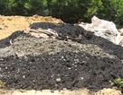 Nhà thầu của Formosa chôn chất thải tại đất của Giám đốc công ty môi trường