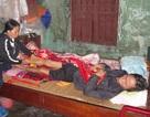 Thảm cảnh đôi vợ chồng nghèo mang bạo bệnh ôm nhau chờ chết