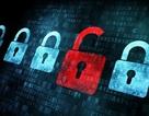 Cổng thanh toán trực tuyến Nganluong.vn bị hacker tấn công