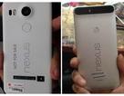 Google gửi thư mời sự kiện đặc biệt ngày 29/9, ra mắt smartphone Nexus mới?