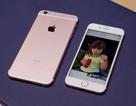 iPhone 6S/6S Plus chưa bán ra, thị trường Việt Nam đã loạn giá