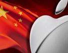 """Apple Store giả mạo """"nở rộ"""" tại Trung Quốc trước thời điểm iPhone 6S được bán ra"""