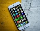 """iPhone 6 và 6S bị """"tố"""" tự tắt không rõ nguyên do"""