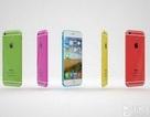 iPhone 6C sẽ dùng chip A9, ra mắt ngay tháng 2