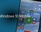 Microsoft khiến người dùng thất vọng vì Windows 10 Mobile trễ hẹn