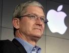 """Tim Cook """"đút túi"""" 10,3 triệu USD trong năm 2015 dù Apple sa sút"""