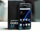 Samsung mất 255USD chi phí linh kiện để sản xuất Galaxy S7