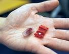 Robot siêu nhỏ giúp loại bỏ những vật thể nuốt nhầm vào bụng