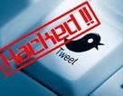 Hacker chiếm tài khoản Twitter diễn viên nổi tiếng, đăng thông báo... đã chết