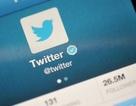 Hacker rao bán thông tin đăng nhập hàng trăm triệu tài khoản Twitter