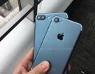 Lộ ảnh thực tế rõ nét bộ đôi iPhone 7 và 7 Plus phiên bản màu xanh