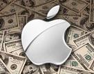 Apple bị truy thu hơn 14 tỷ USD tiền thuế tại châu Âu