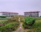 Trường học tiền tỷ bỏ hoang giữa đồng
